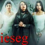 قصة مسلسل ضحايا حلال ومعلومات عن الممثلين ومعاد العرض